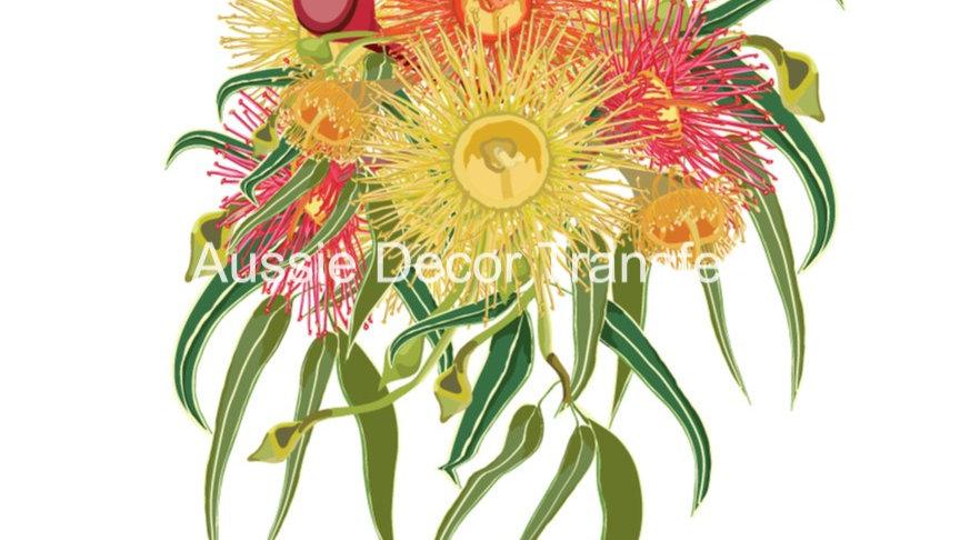 Australian Wildflowers III - Gumnuts & Grevilleas - Dry Rub Transfer