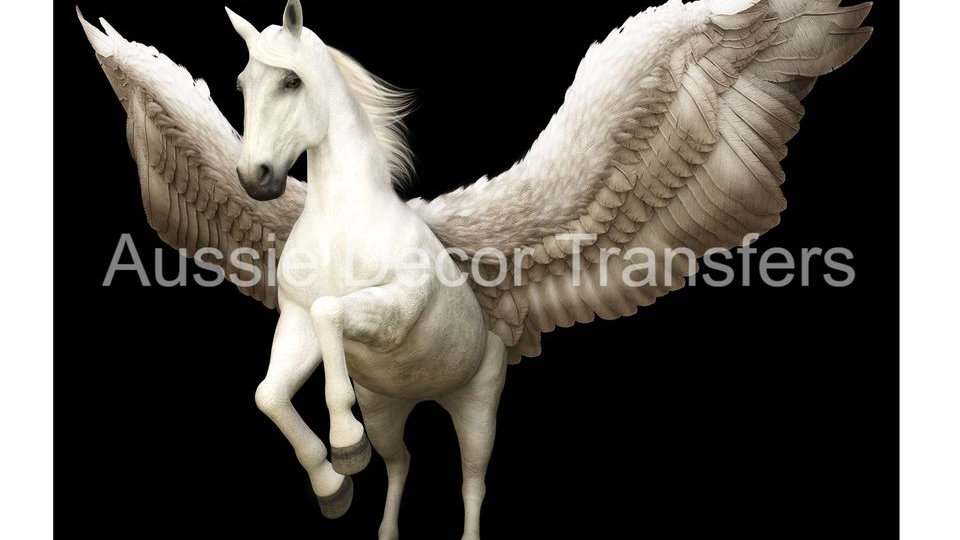 Pegasus photo print A2