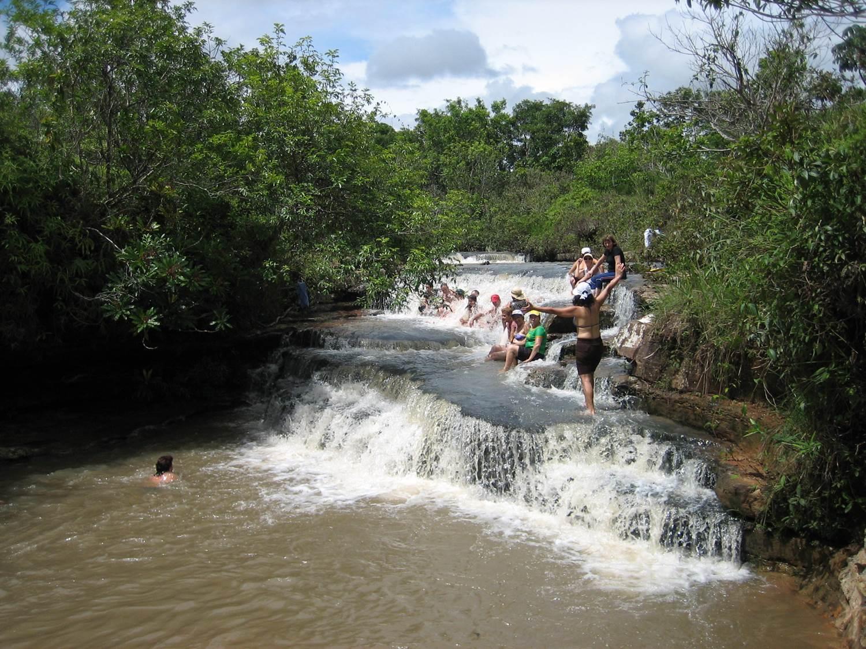 fazenda anew floranew brasil 2.jpg