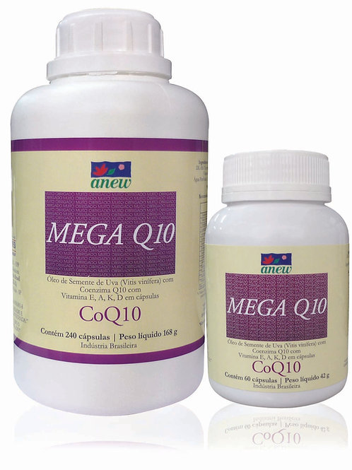MEGA Q10
