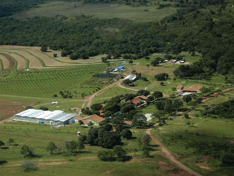 fazenda anew floranew brasil.jpg