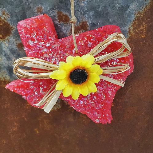 Cactus Flower Sunflower TX