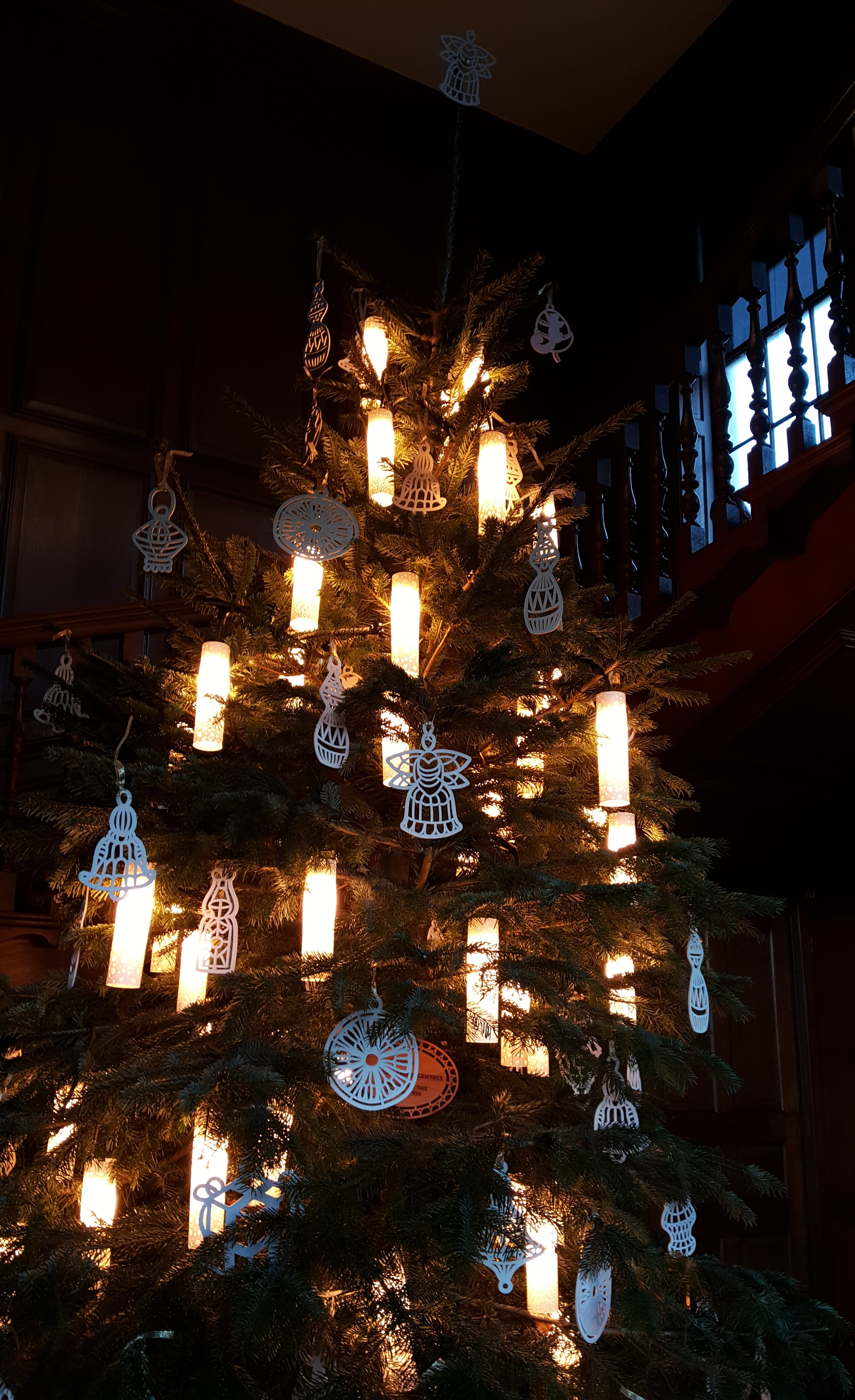 Queens Staircase tree 1