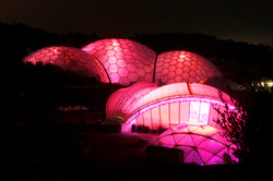 Breast Cancer Awareness Eden Project