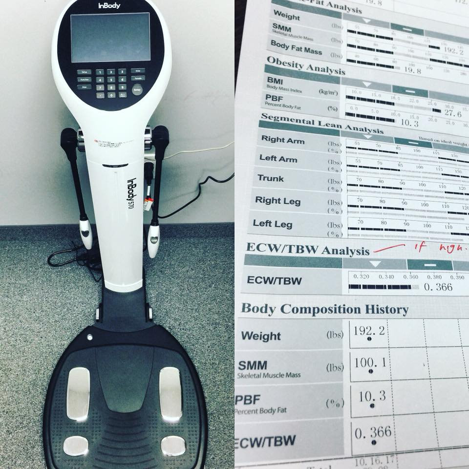 InBody Body Composition Scan & Analysis
