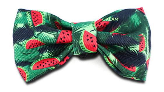 Profusion Bowtie - Watermelon