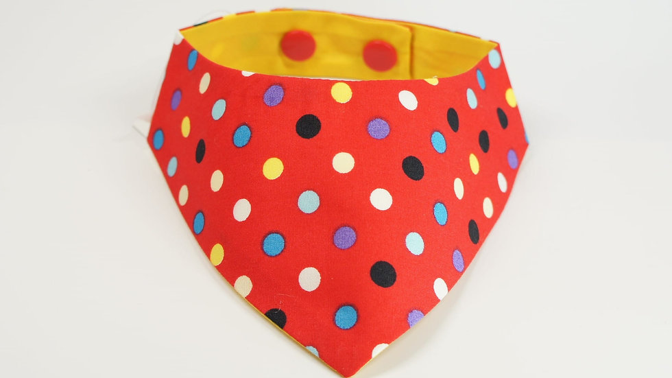 Red Colorful Dots Single