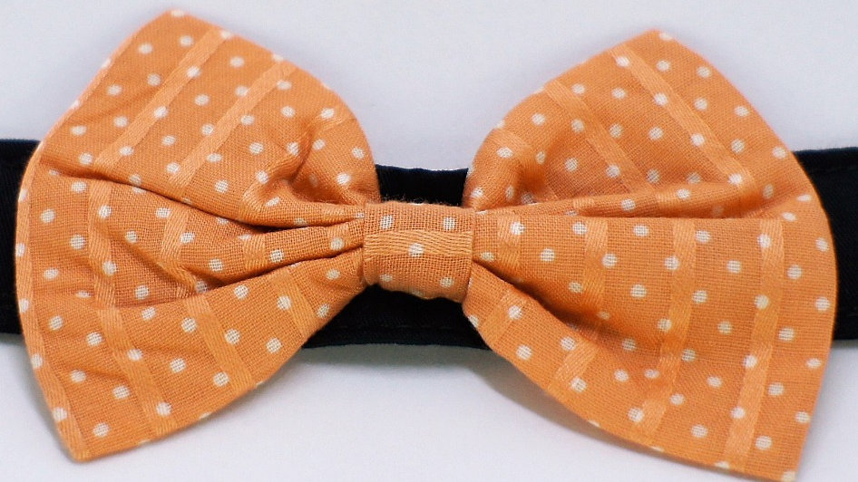 Peach Polka dots Bowtie - (add on to collar)
