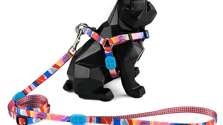 Profusion Dog Harness & Leash Set - Mountain Stamp