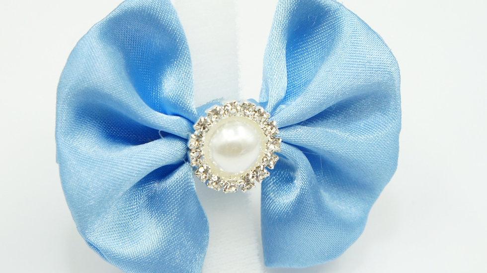 Elegant BabyBlue Bowtie