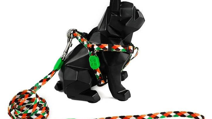 Profusion Dog Harness & Leash Set - Pop Art