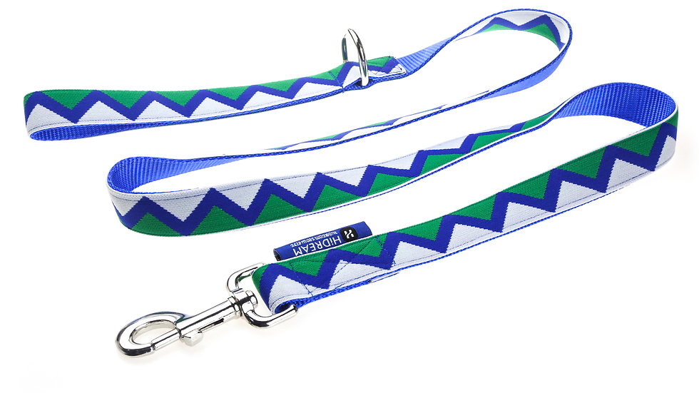 Rainbow Leash - Blue