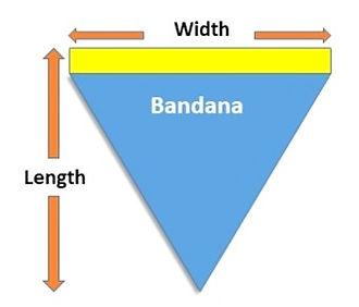 Bandana drawing_edited_edited.jpg