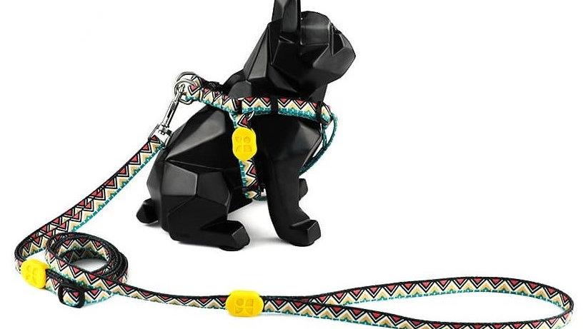 Profusion Dog Harness & Leash Set - Totem