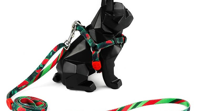 Profusion Cat Harness & Leash Set - Watermelon