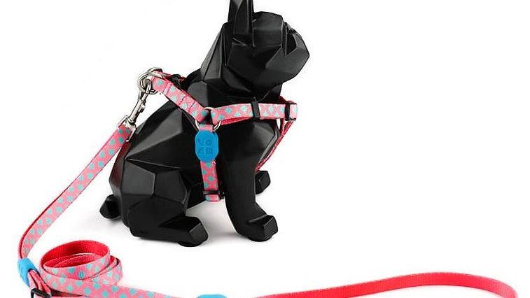 Profusion Dog Harness & Leash Set - Bobby