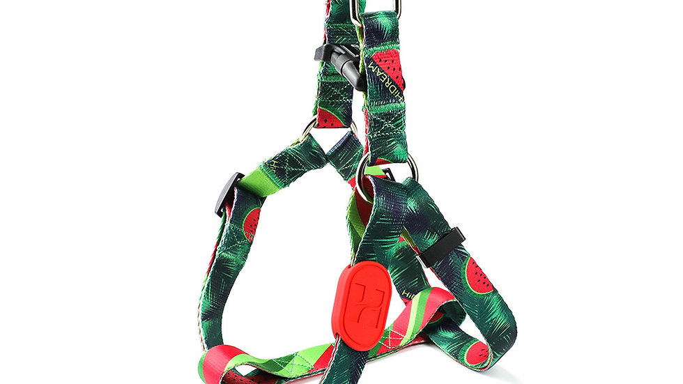Profusion Y-Harness - Watermelon
