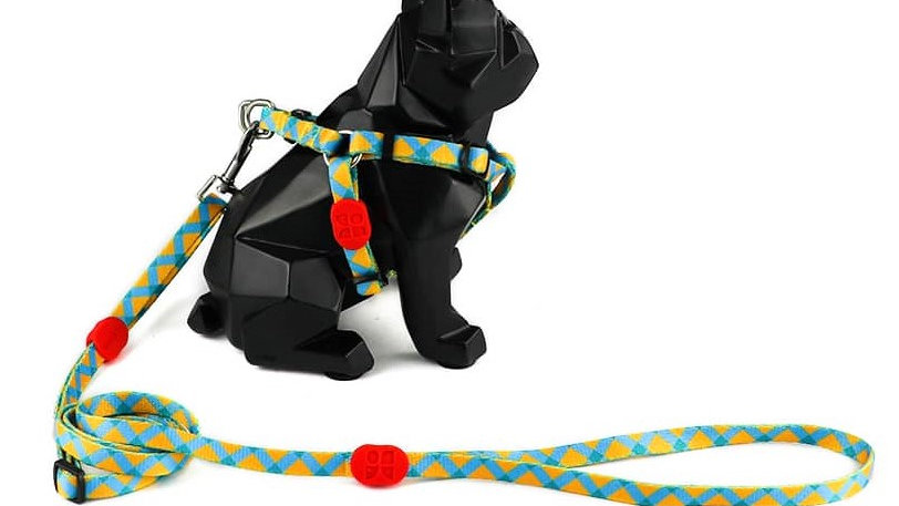 Profusion Dog Harness & Leash Set - Sunrise