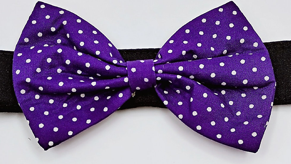 Purple dots bowtie (add on to collar)