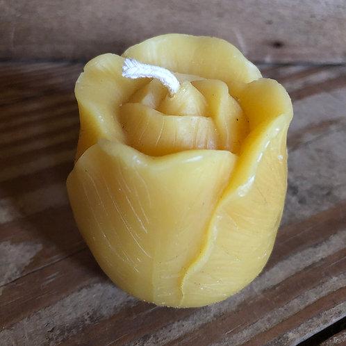 Tulip Votive