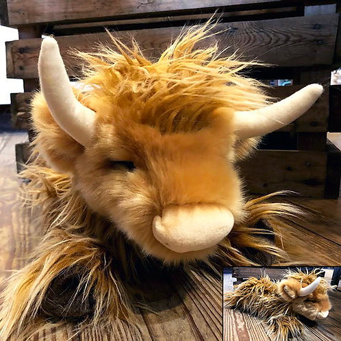 Wallace Highland Cow