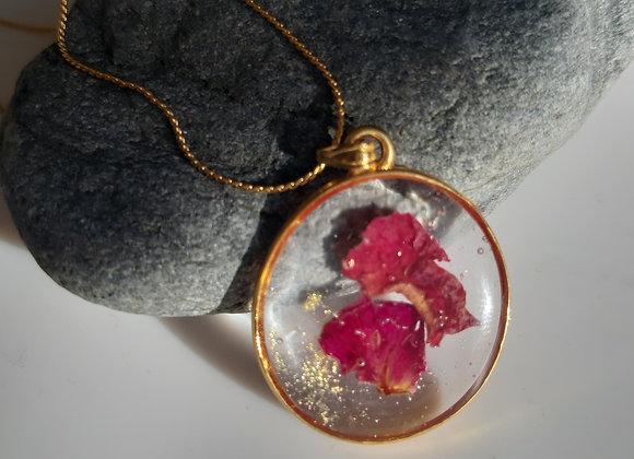 Célébration de Beltaine : Ovale de Rose
