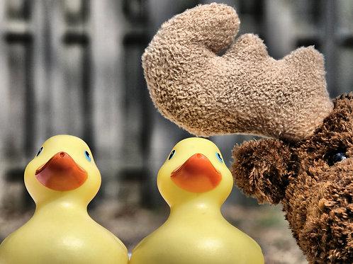 Duck, Duck...