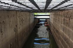 Windermere Fishway