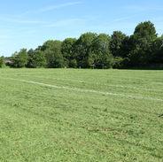 School Playing Field.JPG