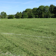 School Playing Field (2).JPG