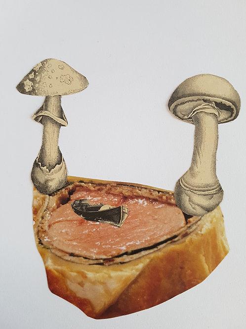 my mushrooms are a sailing boat