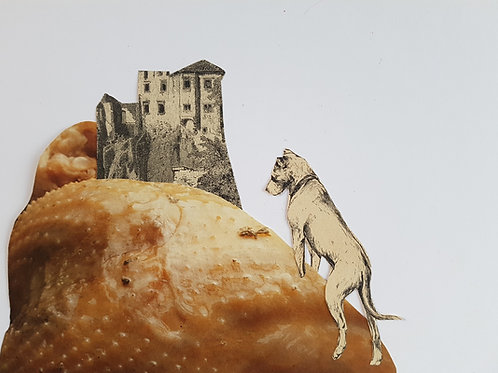 for my dog I built a castle on a frozen chicken wing