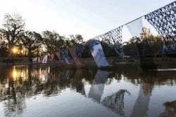 Vanishing Point: Swan Hoppers Legacy