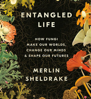 entangledlife.jpg