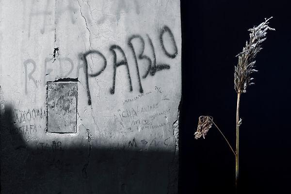 Pablo 20x30 justerad.jpg