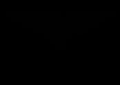 Next Level Athletics Logo black.png
