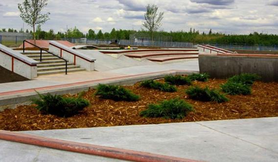 skatepark 05.jpg