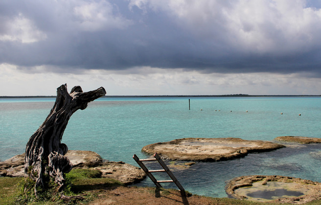12 - Cenote Cocalitos - Stromatolites - Bacalar
