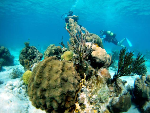 06 - Playa Girón