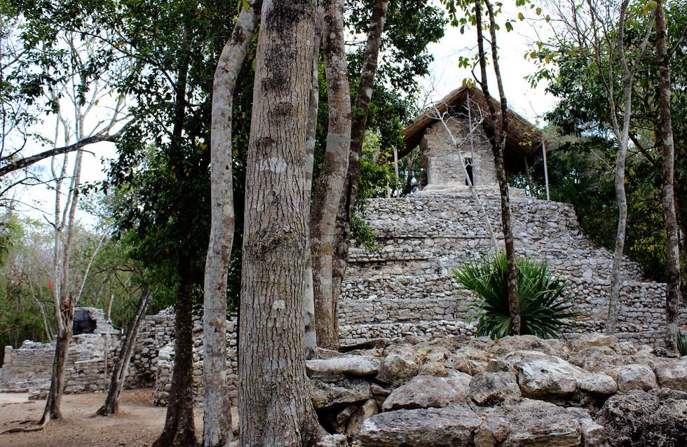 35 - Cobá - Conjunto Pinturas (temple spirituel)