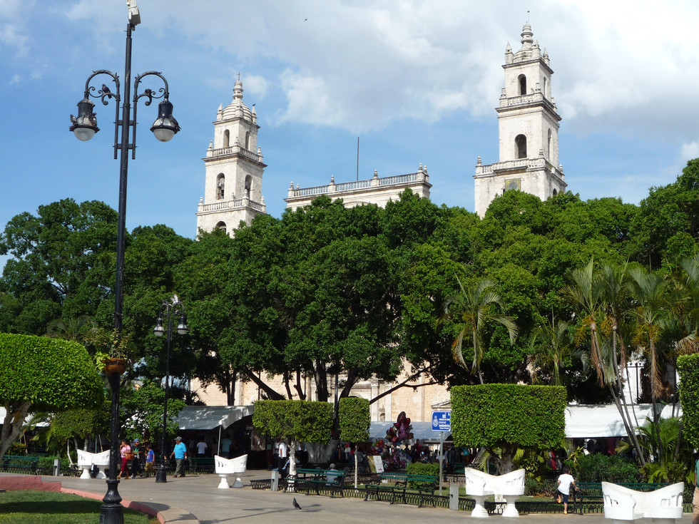 18 - Catedral de San Ildefonso - Plaza Grande