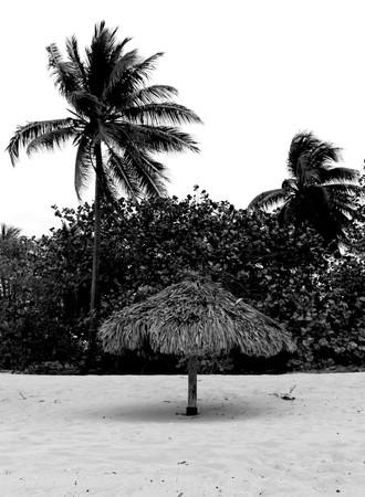 15 - Playa Girón