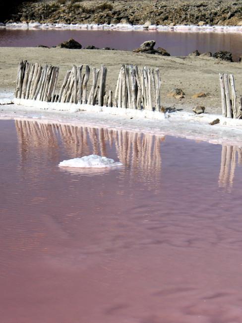 23 - Laguna Rosada