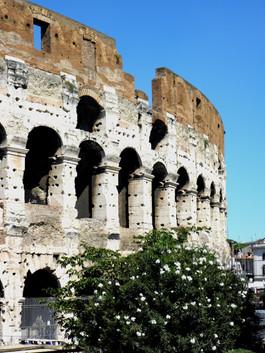 26 - Coliseum