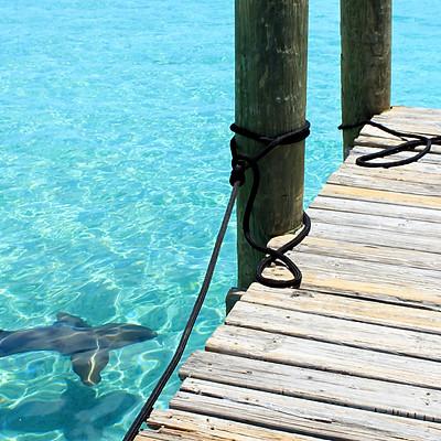 Deep Blue Bahamas