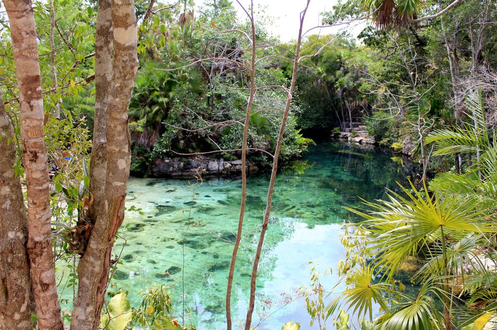 30 - Cenote Tankah - Tulum