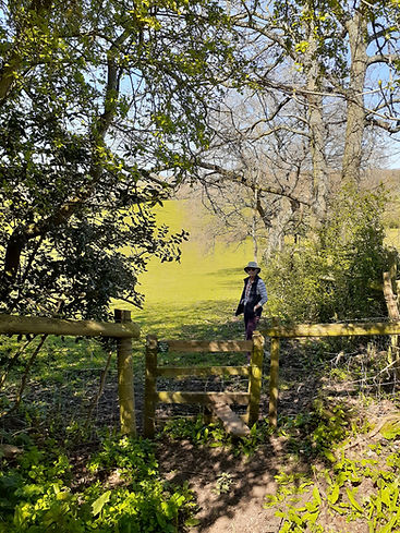 A footpath with a stile and a walker on a pleasant day