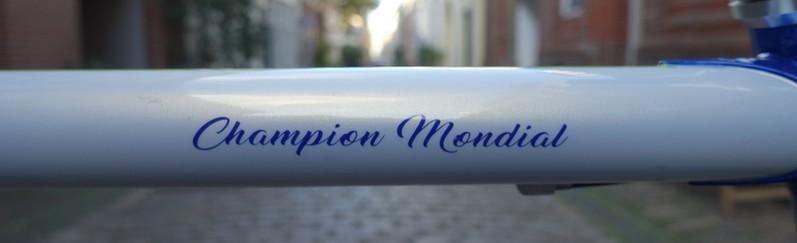 Gazelle Champion Mondial 853 LTD (20).JP