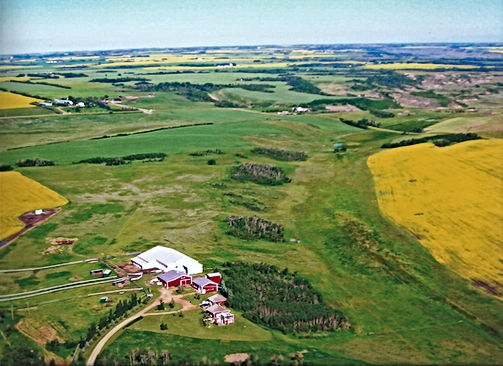 Hosted Camping & Tours | Donalda | Alberta Badlands