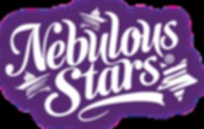 NS-LogoBlanc.png